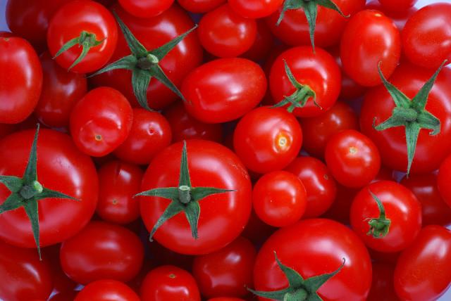 Wołowina z pomidorami