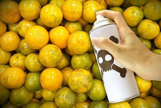 pestycydy w warzywach